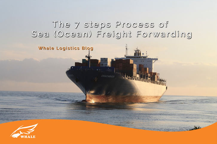 The 7 steps Process of Sea (Ocean) Freight Forwarding | Whale