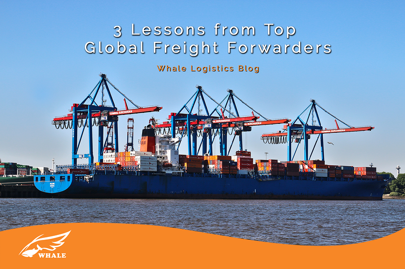 3 lessons from top global freight forwarders whale logistics blog