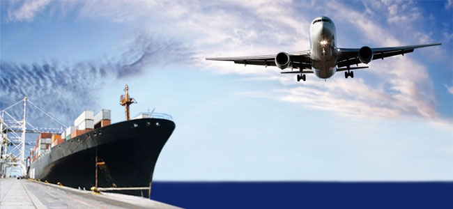 sea freight ocean freight air freight logistics transportation options whale logistics