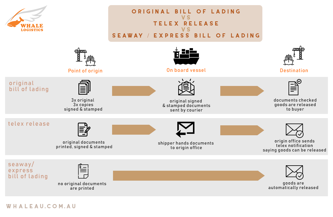 'Whale Knows' - The Difference Between Original Bill of Lading, Telex Release, and Express Bill of Lading
