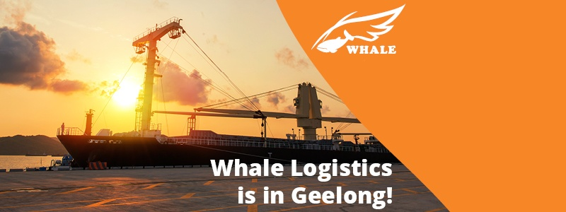 Holiday Giveaway - Whale Logistics Geelong Celebration!