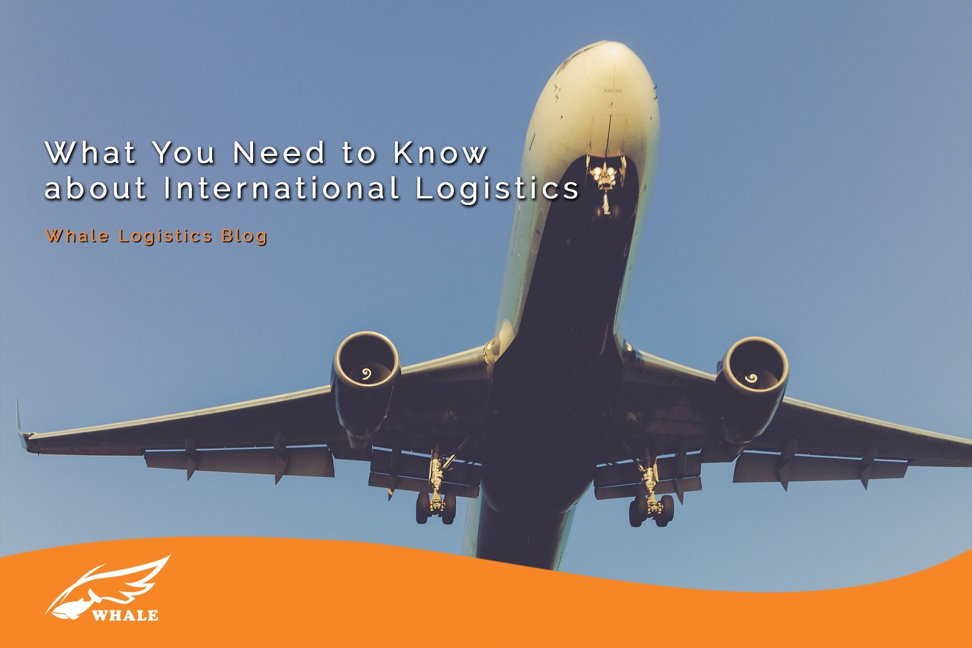 What You Need to Know about International Logistics | Whale Logistics Blog