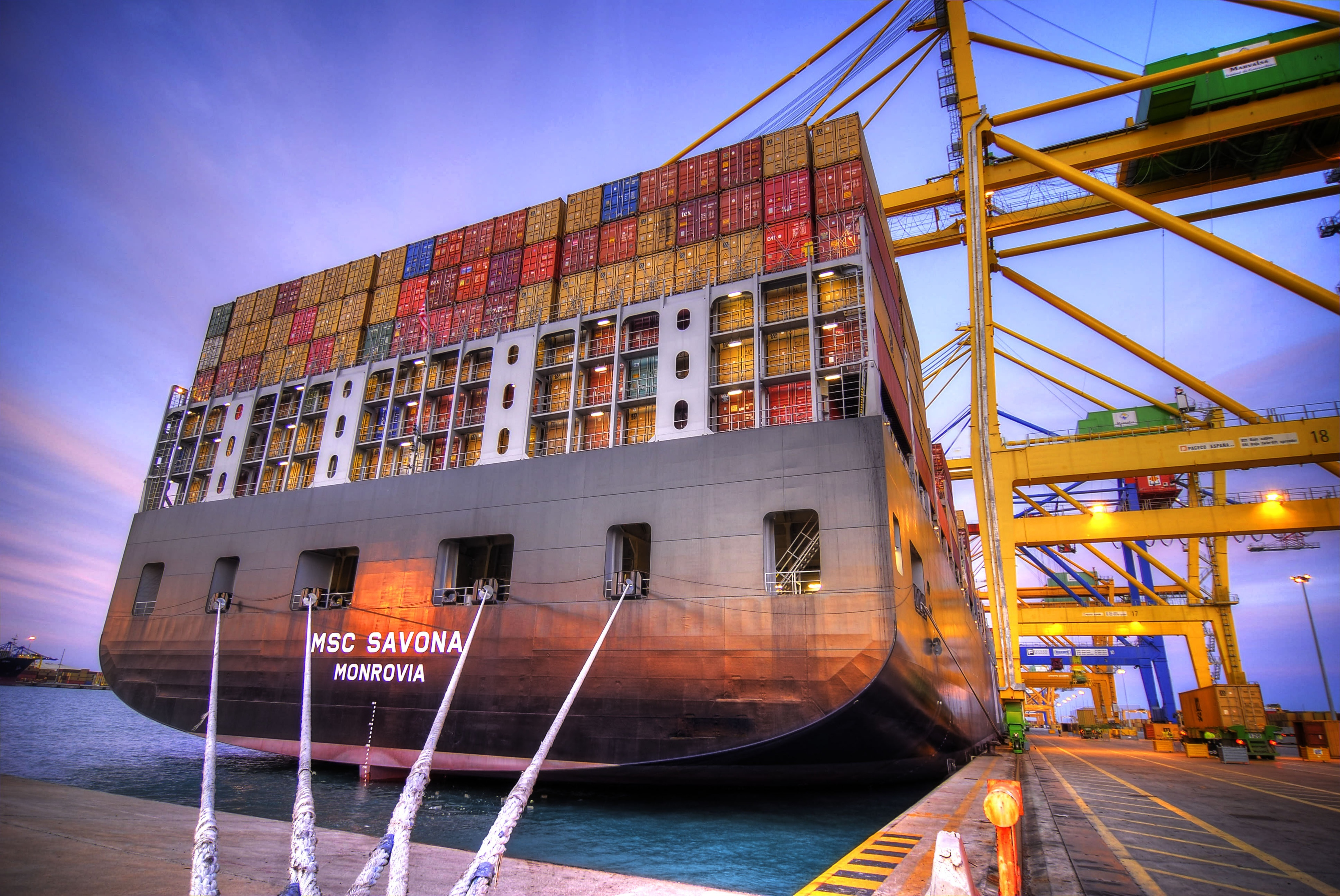 Freight Forwarding News - MSC Restructures South East Asia - Oceania Network